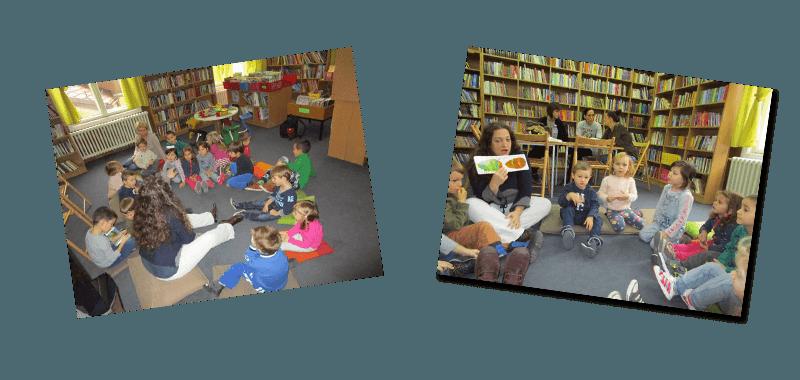 biblioteka_zmaj